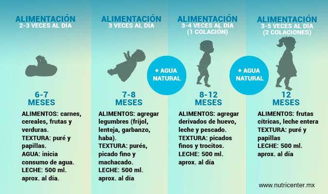 Guía de alimentos, texturas y frecuencia para niña de 6 meses a 1 año